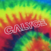 preview Calyc3_Calyce_Tiedye_zoom.jpg